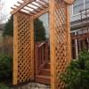 Cedar arbor clear stain